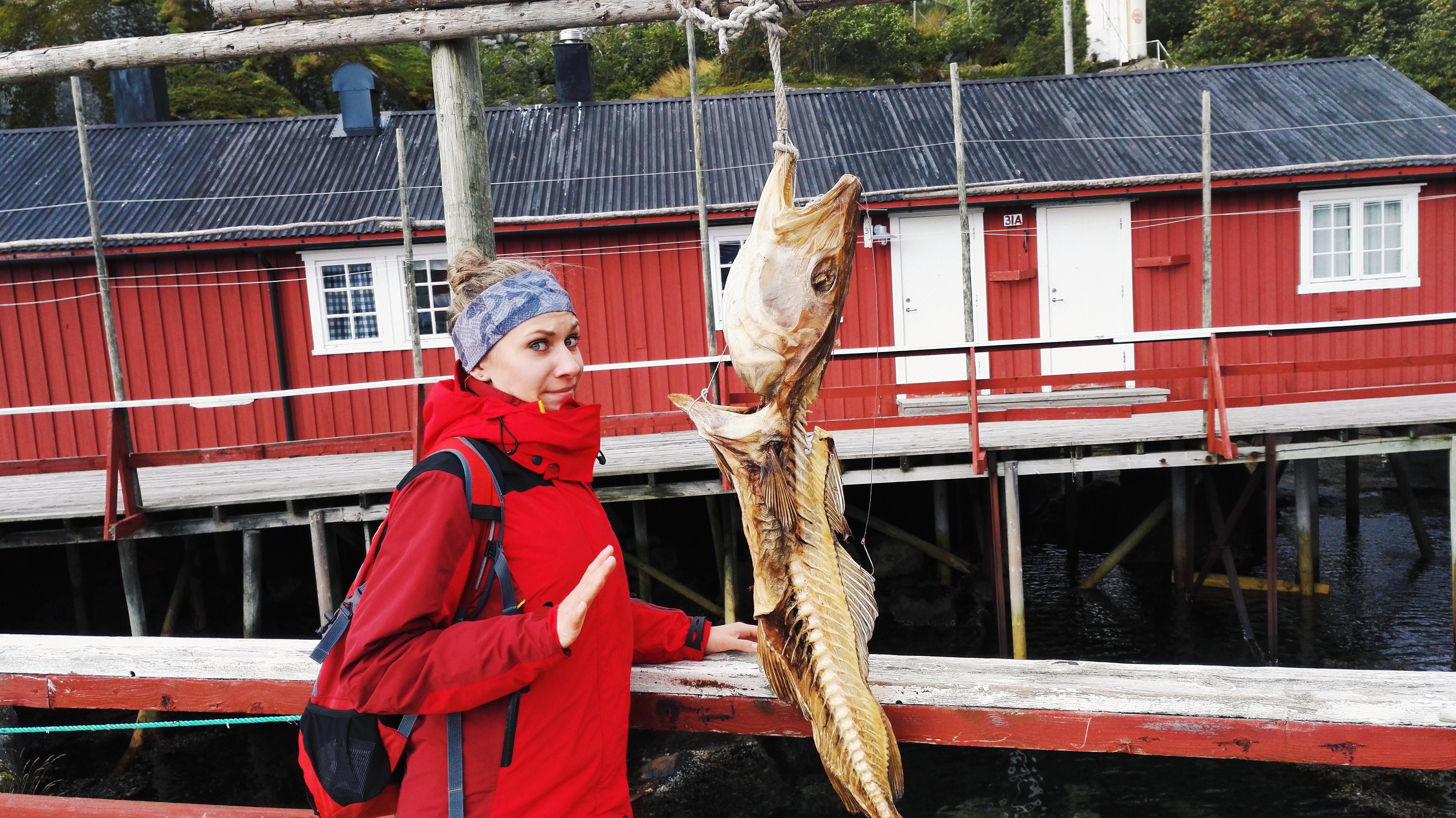 Norwegia: Sztokfisz – tak pachną pieniądze!