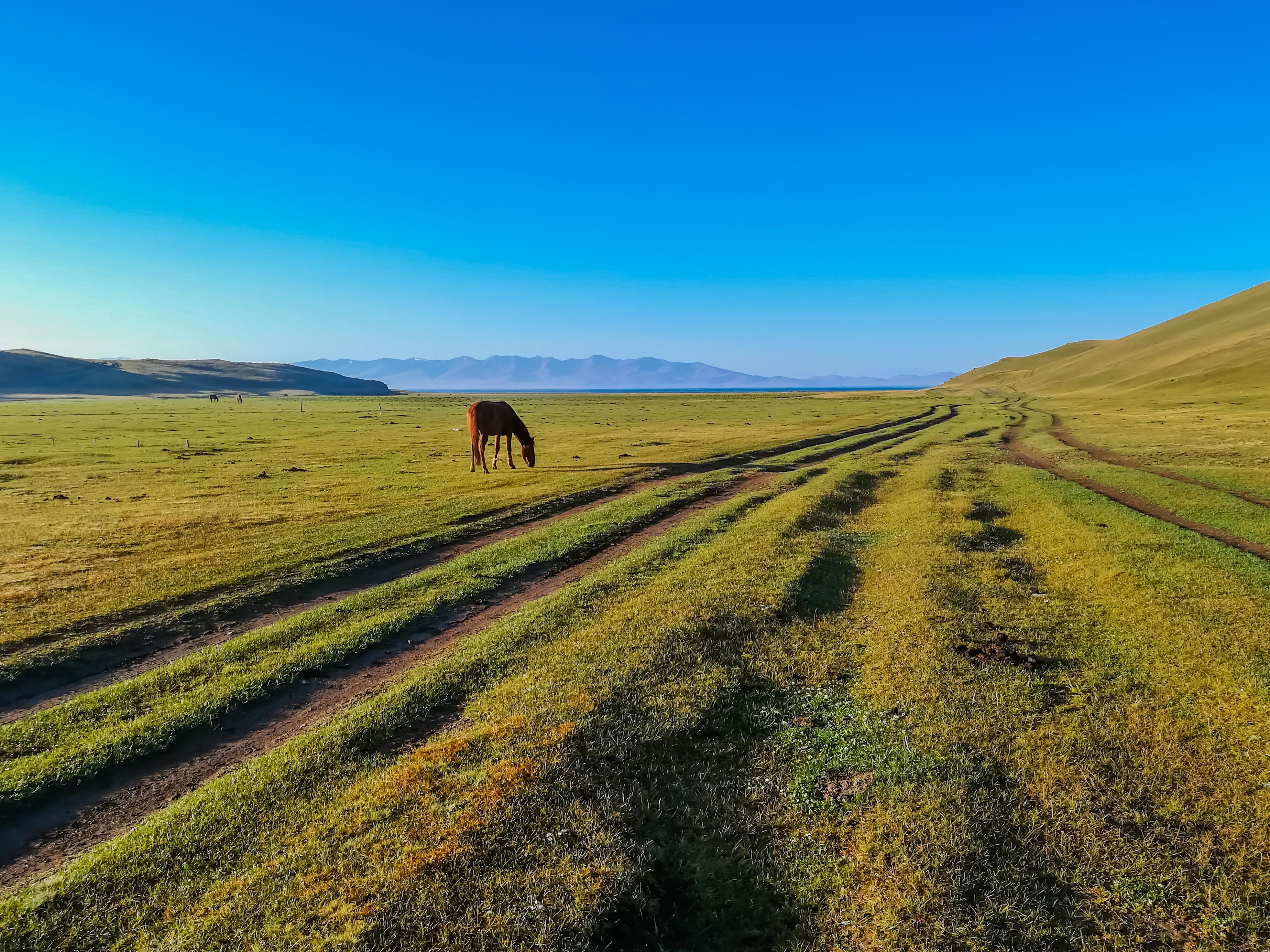 Song Kul – konny trekking nad wysokogórskie jezioro w Kirgistanie