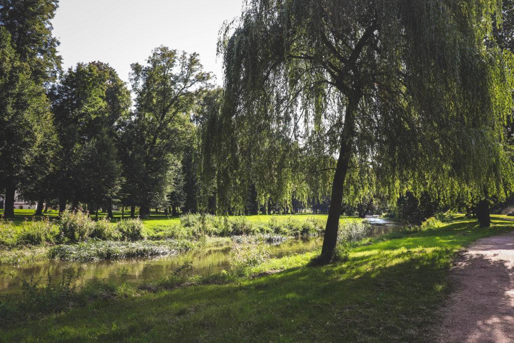 Pałac Łomnica - zwiedzanie